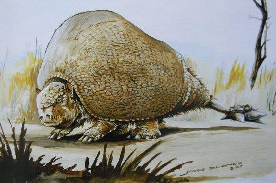 "Ilustração retirada do livro ""Bestiario Fósil"", de Analía Forasiepi, Agustín Martinelli e Jorge Blanco"