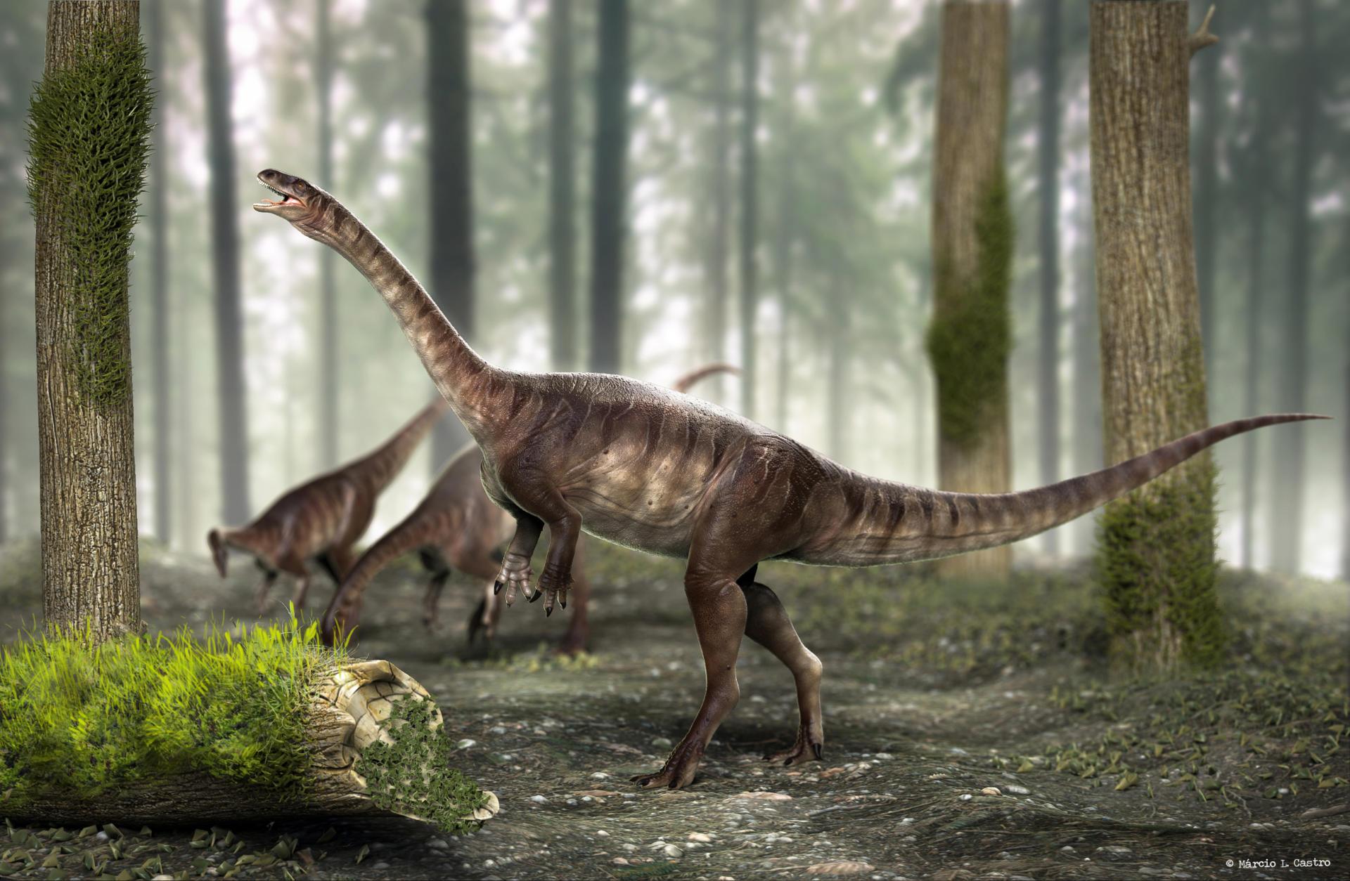 Desenho de grupo de dinossauros pescoçudos