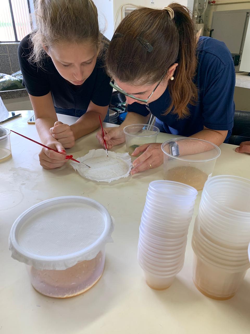 Foto colorida vertical mostra, em detalhe, duas mulheres analisando, com utensílios que parecem pequenos pinceis, uma amostra em um recipiente branco