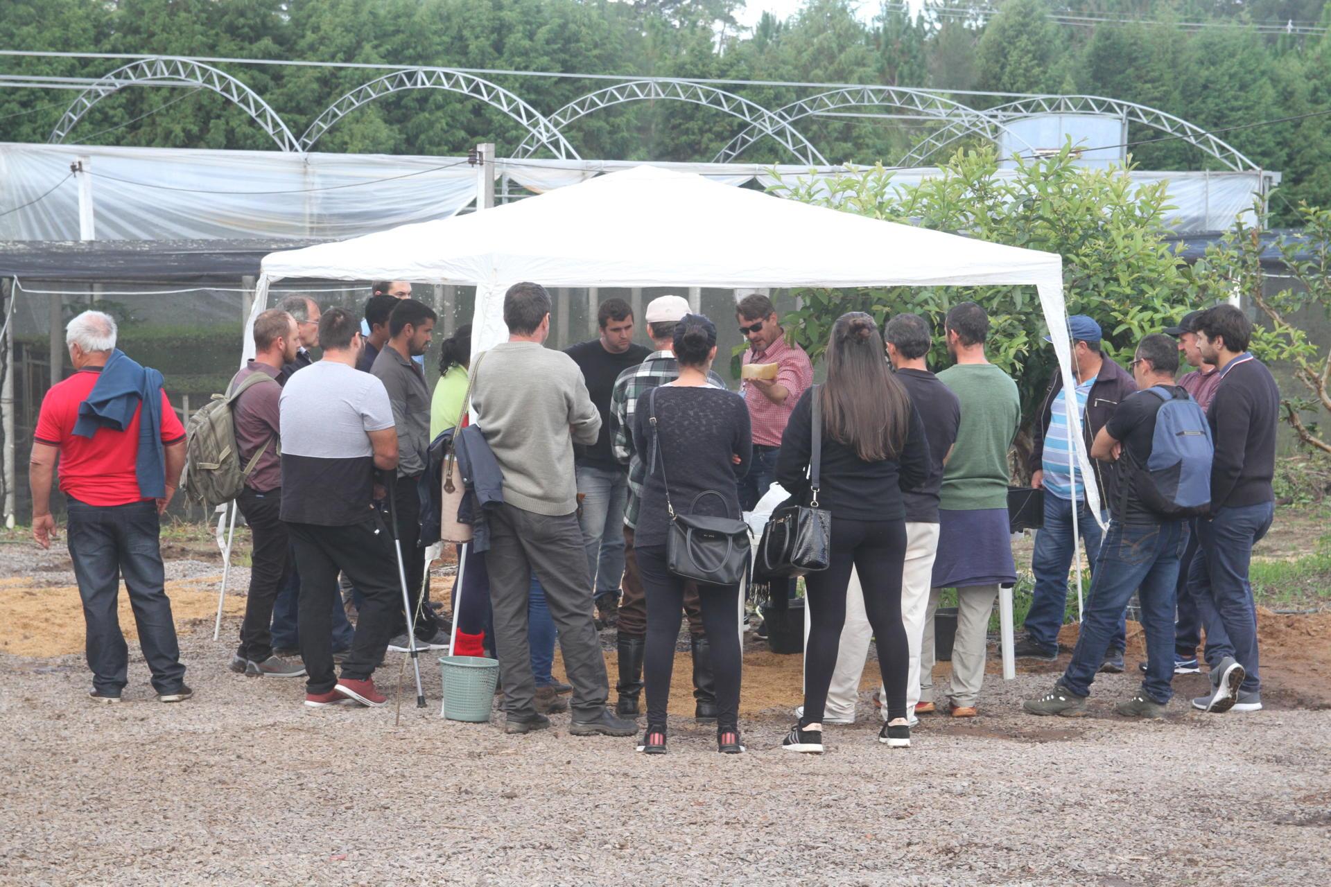Na foto, grupo de pessoas, de costas, embaixo de estufa, prestam atenção a explicação de palestrante