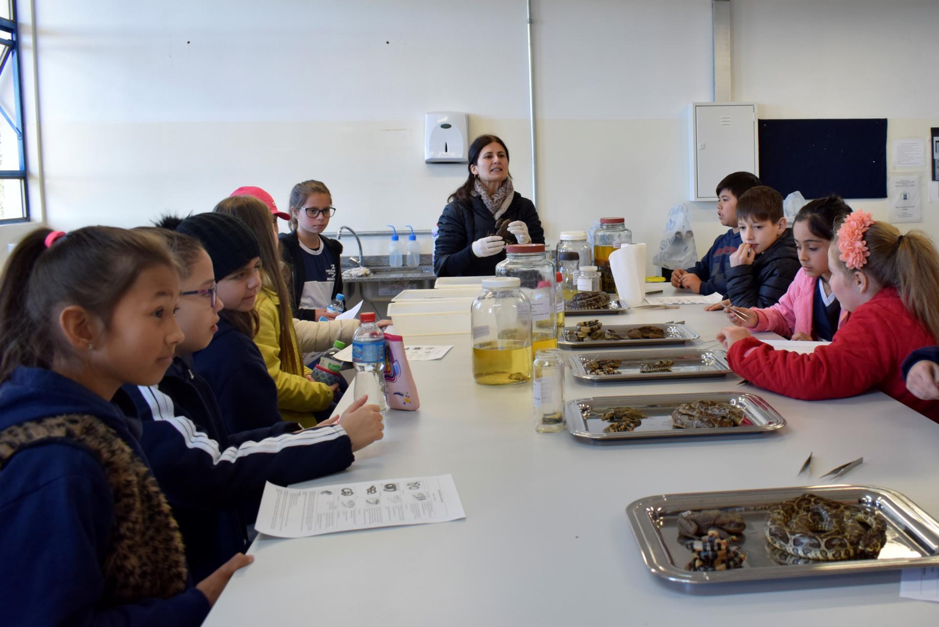 Foto colorida horizontal mostra crianças sentadas ao redor de uma grande mesa, com uma professora na ponta, e sobre a mesa há bandejas com animais peçonhentos, como cobras
