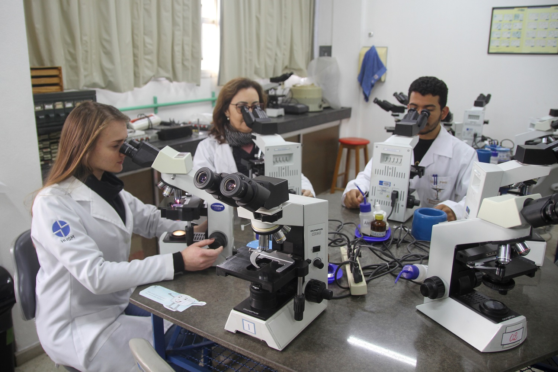Fotografia de três pessoas observando amostras com uso de microscópios