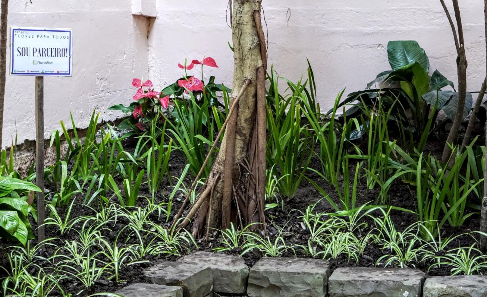 """Foto colorida horizontal mostra em detalhe um pequeno jardim, com alguns tipos de plantas, umas flores vermelhas e uma plaquinha escrito """"Flores para todos - sou parceiro"""""""