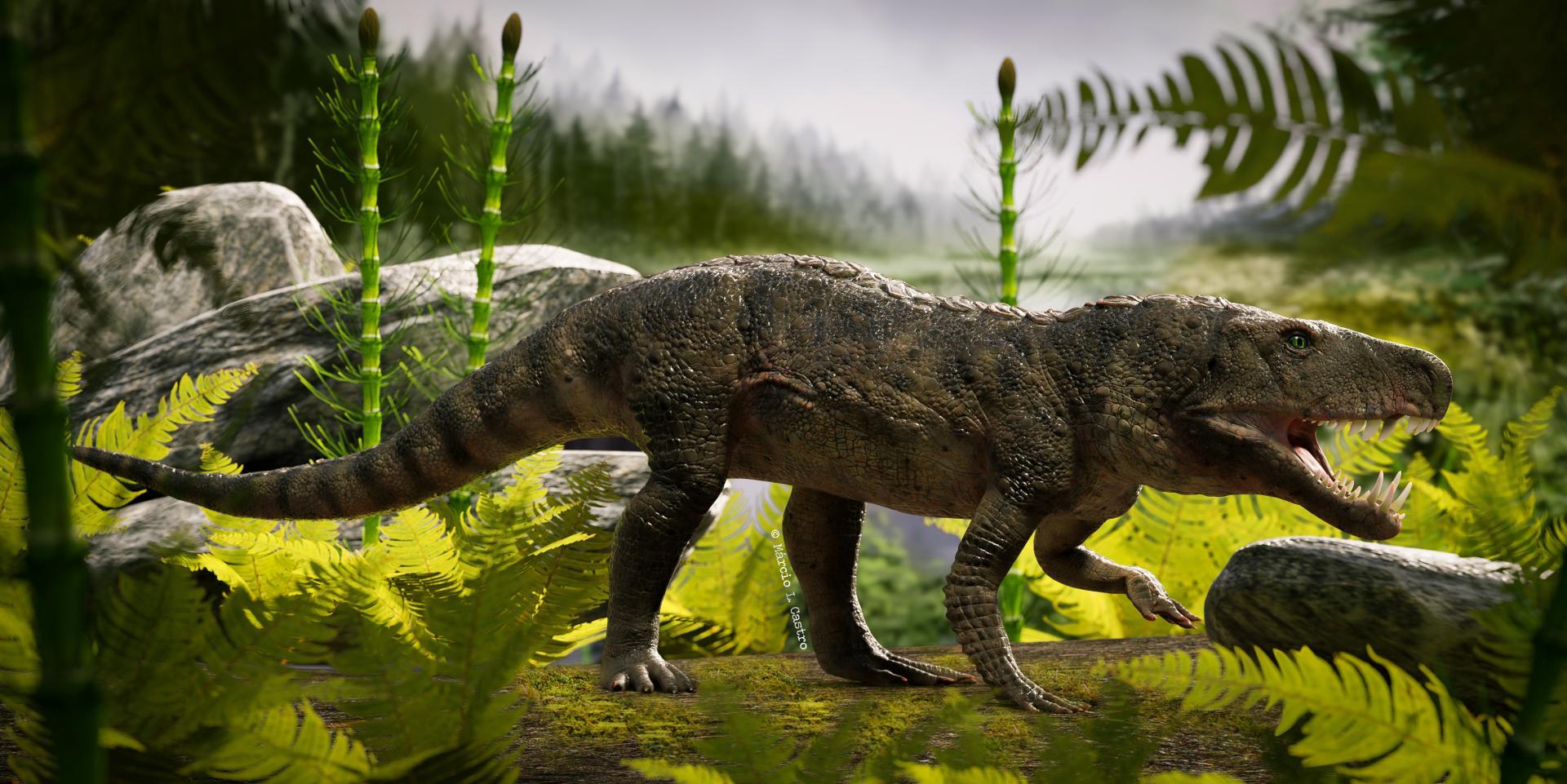 Foto colorida horizontal simula uma paisagem de floresta triássica, com vários tons de verde, e a reprodução do animal à frente, de boca aberta, dentes grandes e cauda
