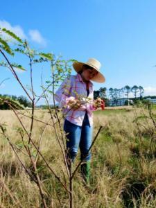 Foto colorida de uma moça em meio a uma plantação