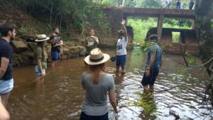 Medição de Vazão de Curso de Água - Vinculada a disciplina de Hidrologia