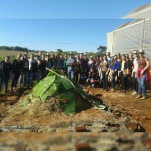 Tratamento de Resíduos Sólidos Agrícolas e Agroindustriais