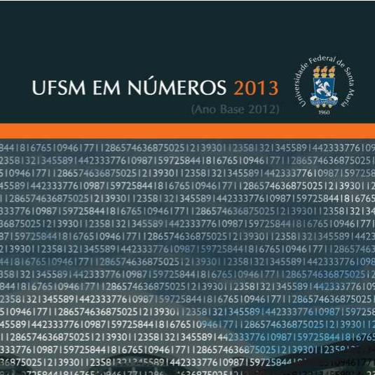UFSM em números 2013