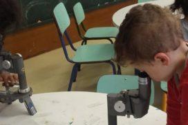 _violeta_microscopio