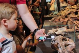 Centro de Apoio à Pesquisa Paleontológica - CAPPA
