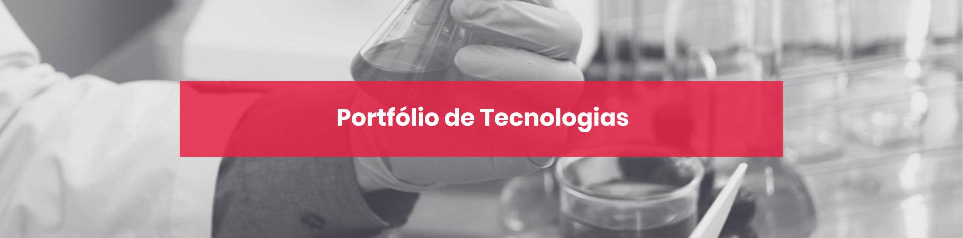 Portfólio de Tecnologias
