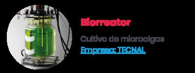 Biorreator - Cultivo de microalgas. Empresa: TECNAL