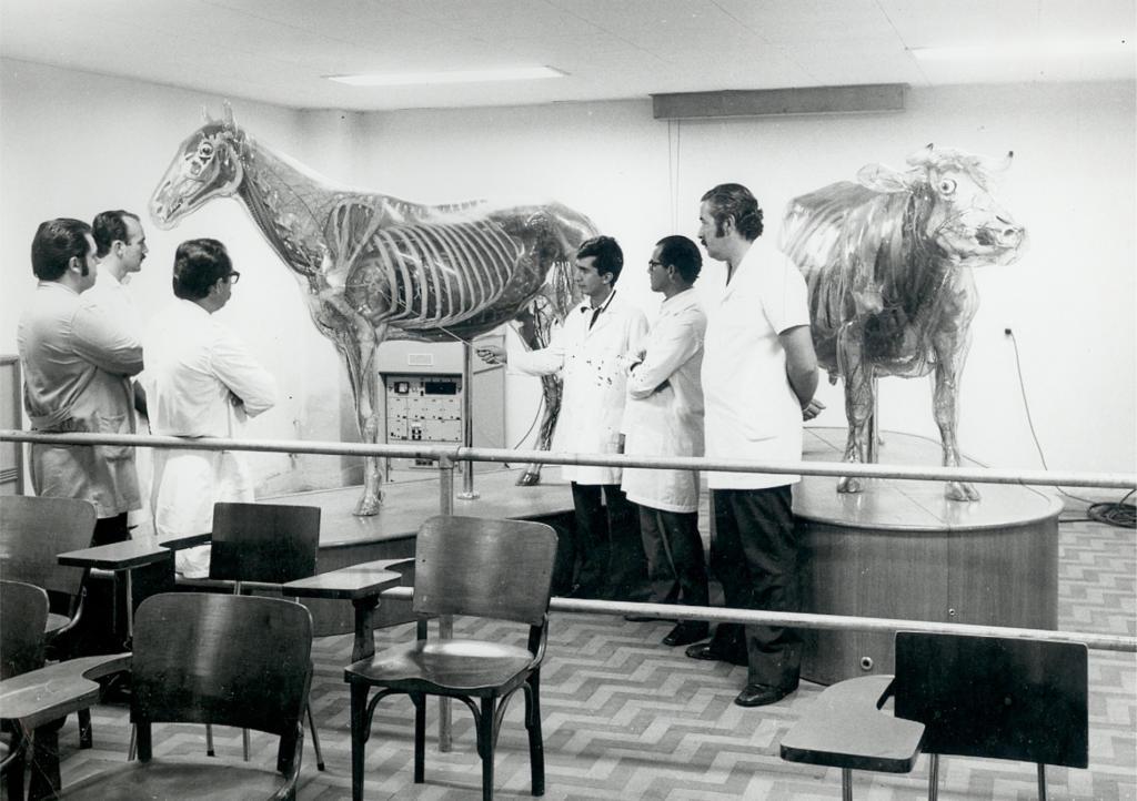 Fotografia horizontal em preto e branco de dois esqueletos de animais ao centro de uma sala, com seis homens a sua volta. O primeiro esqueleto é de um eqüino e o segundo de um bovino, ambos enquadrados por inteiro e posicionados de frente, em forma de seta, onde a traseira destes está próxima e a parte frontal afastada, cada um sobre um tablado de madeira. Do cavalo aparece o perfil esquerdo e do boi o perfil direito. Os esqueletos são em tamanho real, ambos de resina transparente, sendo visíveis também suas vísceras. Os seis homens estão em pé, enquadrados por inteiro e posicionados à esquerda, todos de pele branca, cabelo curto e escuro e jaleco branco, observando o cavalo. Destes, três deles estão à esquerda, de perfil direito, voltados para o esqueleto do eqüino. O primeiro homem usa óculos de grau, tem bigode e está de braços cruzados. Tem o quadril encostado em uma barra de ferro horizontal. O segundo homem tem costeletas grandes, veste calça escura e também está de braços cruzados. Do terceiro homem, de bigode, visualiza-se apenas o rosto, pois o corpo está encoberto pelo perfil do segundo homem. O quarto, quinto e sexto homens estão à direita do esqueleto do eqüino, todos usando calça e sapato escuros. O quarto homem tem uma vareta na mão direita com a qual aponta para o esqueleto do eqüino. O quinto homem usa óculos de grau e tem os braços cruzados, a observar. O sexto homem, de bigode e costeletas largas, está com os braços cruzados para trás. Às costas deles está o esqueleto do bovino.