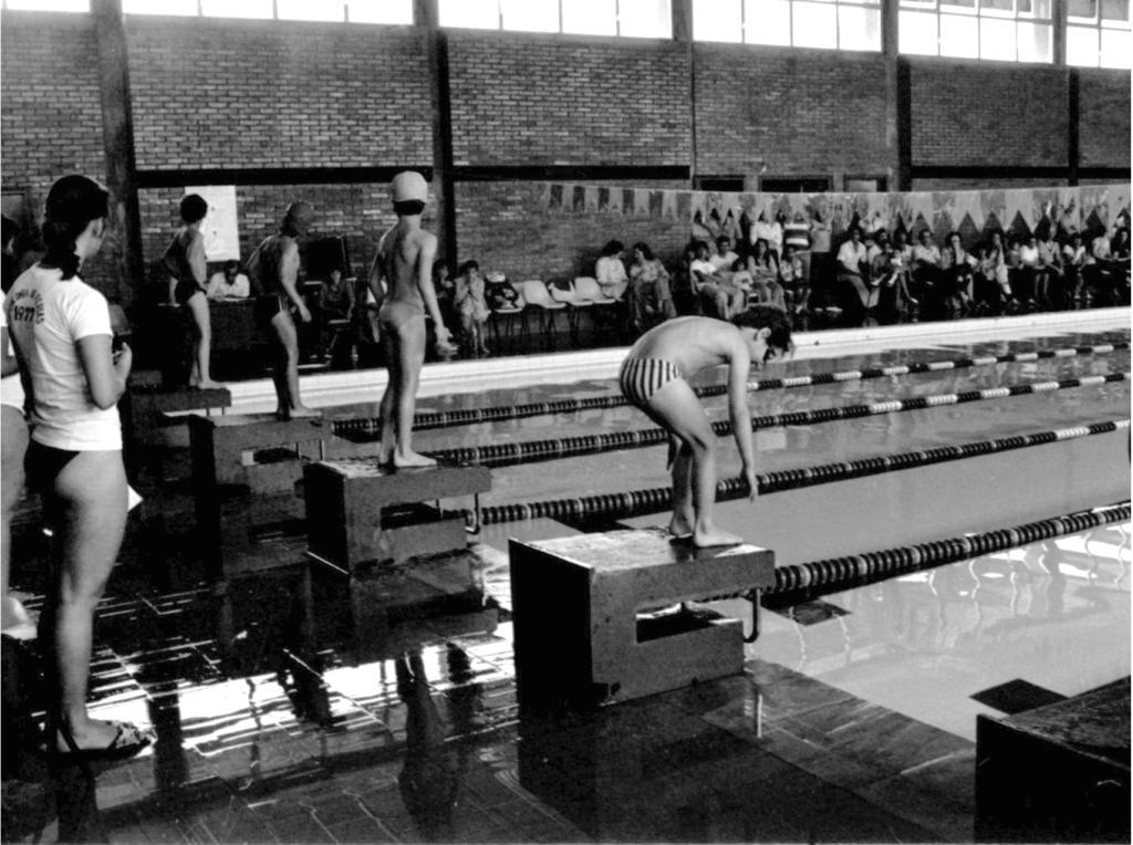 """Fotografia horizontal, em preto e branco, de meninos em pontos de largada na borda de uma piscina retangular, no interior de um ginásio. A fotografia foi feita de um dos cantos da lateral esquerda da piscina. Quatro meninos estão alinhados da frente para o fundo da imagem, em pé, sobre pontos de largada em formato da letra """"C"""" e com base retangular. À frente deles, a piscina. Estão de costas, exceto o menino em primeiro plano que está de perfil direito, curvado, com as mãos próximas aos pés. Aparentam cerca de doze anos, têm pele clara, são magros, usam sungas e os meninos ao centro estão de touca. O menino em primeiro plano usa um óculos de mergulho transparente e sunga clara com listras verticais escuras. À esquerda, uma jovem de costas e ligeiramente de perfil direito, está atrás dos meninos, em pé, com as mãos próximas ao peito. Tem pele clara e está com o cabelo, escuro e ondulado, preso. Veste uma camiseta clara com uma estampa nas costas, com escritas em semicírculo e ao meio o ano de 1977, e uma peça inferior de um biquíni escuro. Ao fundo, uma parede, feita de tijolos aparentes com uma seqüência de janelas quadradas na parte superior. Há uma mesa com um homem sentado atrás, à esquerda da parede, que atrai a atenção dos meninos e da moça em pé, com exceção do menino que está em primeiro plano alongando-se. E, à direita da parede, cerca de vinte pessoas sentadas lado a lado em cadeiras com assentos e encostos de plástico e pés de metal. Acima da piscina, um fio com mais de vinte bandeirinhas decorativas preso em uma das extremidades na parede. O chão perto da piscina é um piso escuro e bastante úmido."""