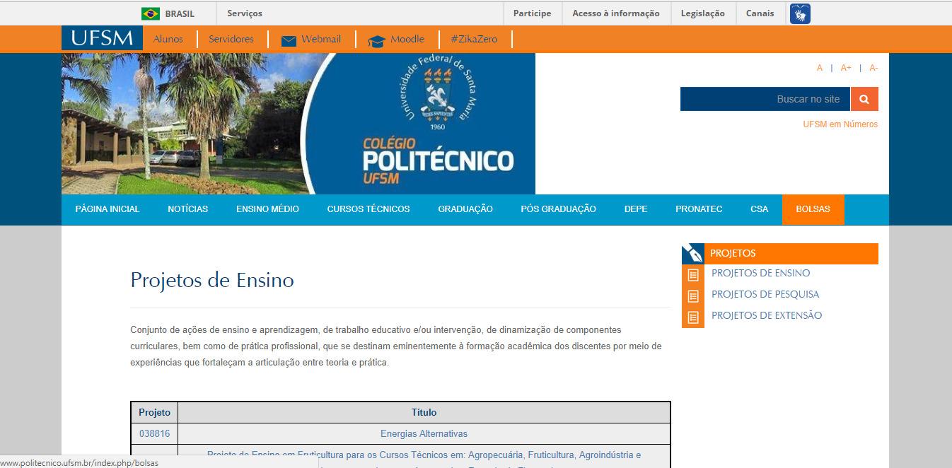 print site poli bolsas