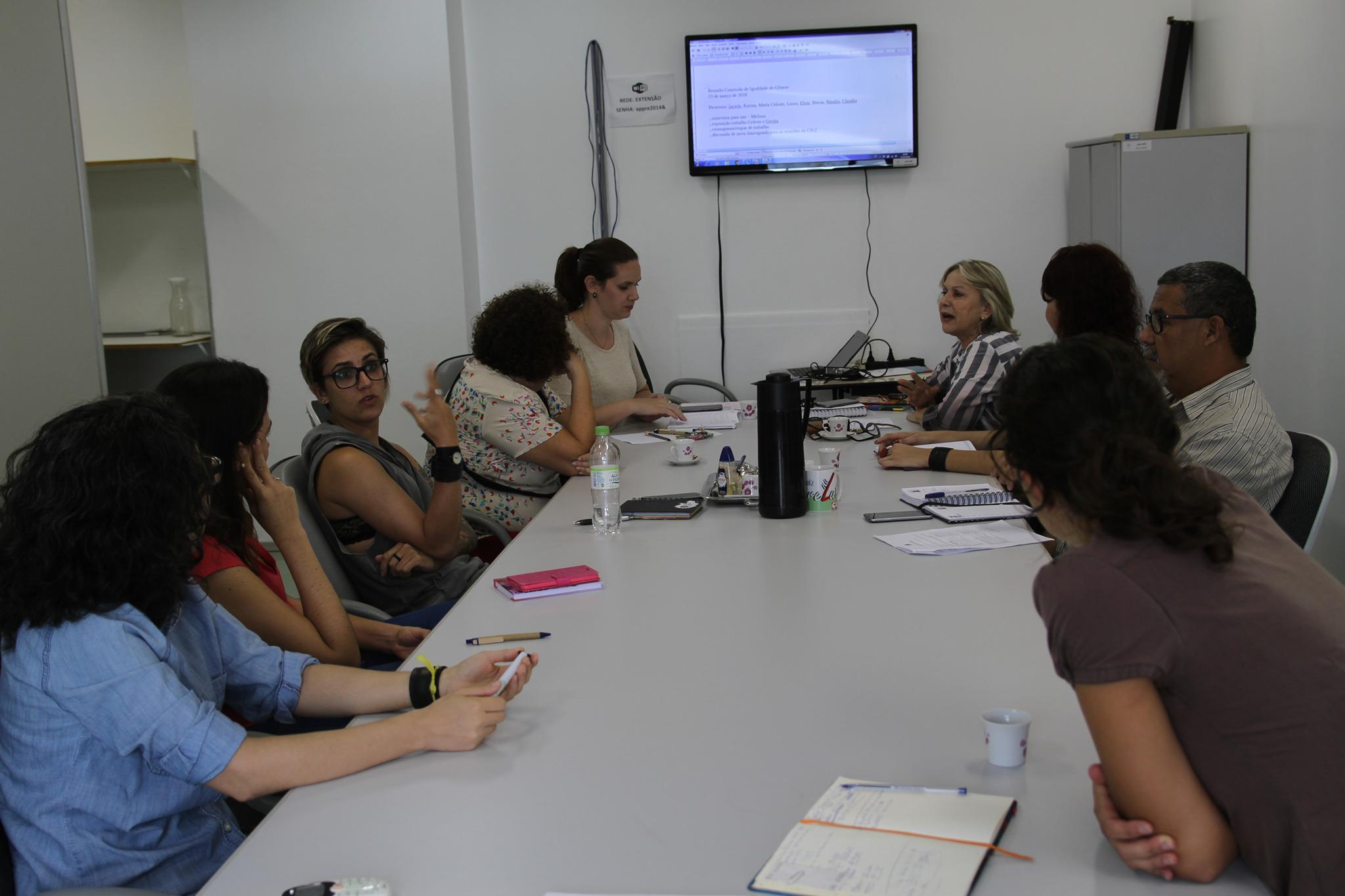 Audiodescrição: na foto, uma reunião da Comissão Institucional de Políticas de Igualdade de Gênero na Universidade. fim da audiodescrição
