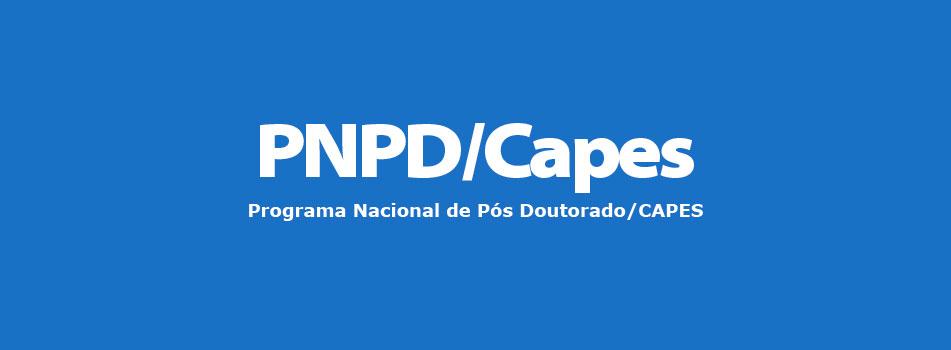 destaque PNPD