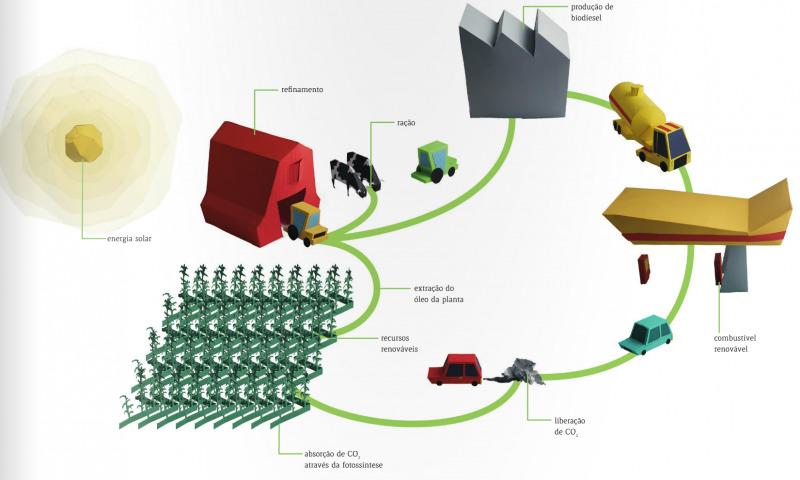 Ciclo de vida do biodiesel