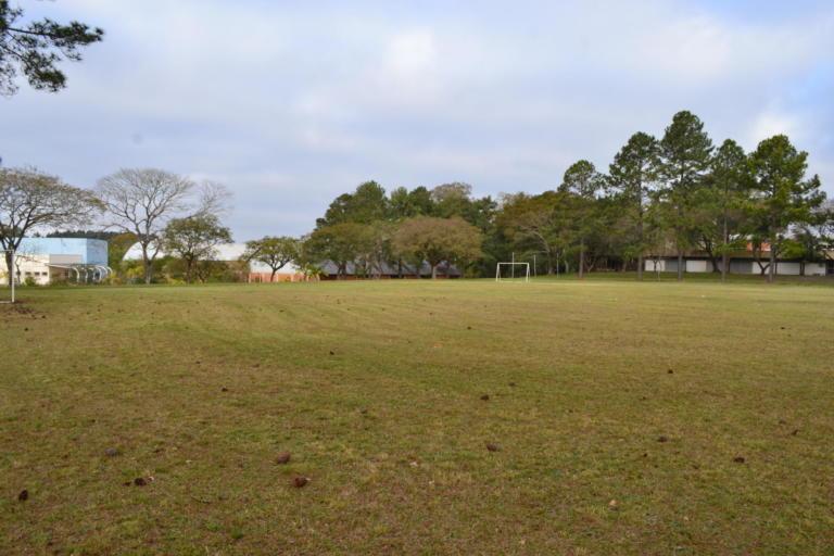 Campo de futebol com área arborizada no fundo.