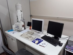 microscopio eletronico