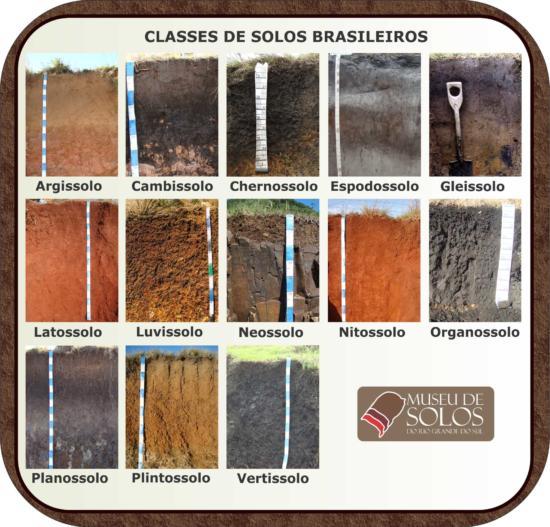 Classes de solos brasileiros foto